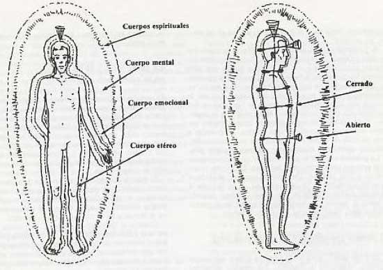 Carácter y Patrones del Aura -lowen -reich - haiki- oral